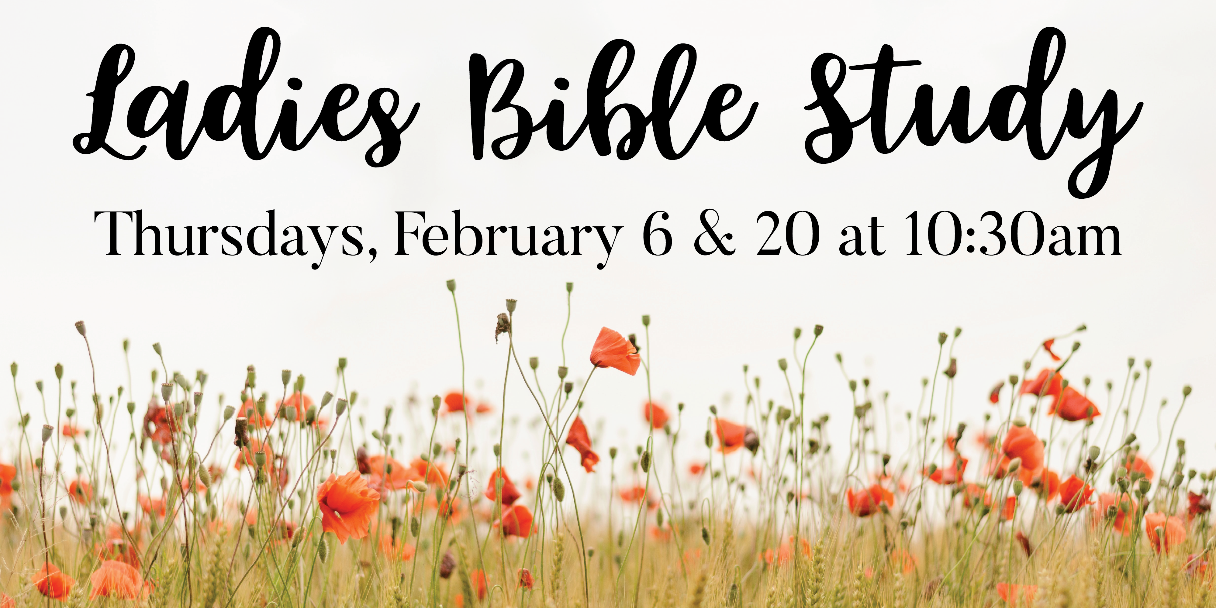 Highlands Presbyterian Church Grayson Georgia Womens Bible Study